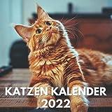 Katzen Kalender 2022: Ein Monatskalender mit Bildern der Katzen, Katzenkinder für Schreibtisch, Büro, ideal zum Schreiben von Terminen, Geburtstagen, ... Kinder, Katzenfreunde, Katzenbesitzer