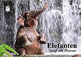 Elefanten. Spaß am Wasser (Wandkalender 2021 DIN A2 quer)