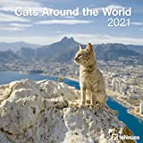 Cats Around the World 2021 - Wand-Kalender - Broschüren-Kalender - 30x30 - 30x60 geöffnet - Katzen-Kalender