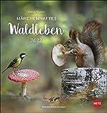 Märchenhaftes Waldleben Postkartenkalender 2022 von Vadim Trunov - Tierkalender mit perforierten Postkarten - zum Aufstellen und Aufhängen - 16 x 17 cm