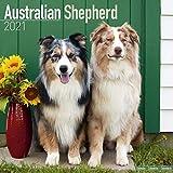 Australian Shepherd 2021 Wall Calendar