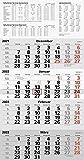 rido/idé 7033420002 Wandkalender/Vier-Monats-Kalender quattroplan 2, 1 Blatt = 4 Monate, 330 x 635 mm, Kalendarium 2022