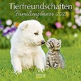 Tierfreundschaften - Familientimer 2021: Broschürenkalender mit Ferienterminen