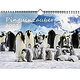 Pinguinzauber DIN A4 Kalender für 2021 Pinguin - Seelenzauber