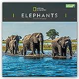 National Geographic Elephants – Elefanten 2022: Original Carousel-Kalender [Mehrsprachig] [Kalender] (Wall-Kalender)