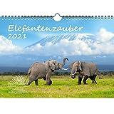 Elefantenzauber DIN A4 Kalender für 2021 Elefanten - Seelenzauber
