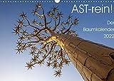 Astrein! - Der Baumkalender 2022 (Wandkalender 2022 DIN A3 quer)
