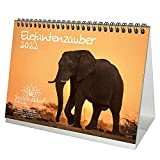 Elefantenzauber DIN A5 Tischkalender für 2022 Elefanten - Geschenkset Inhalt: 1x Kalender, 1x Weihnachts- und 1x Grußkarte (insgesamt 3 Teile)