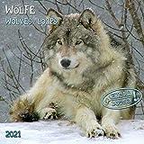 Wolves/Wölfe 2021: Kalender 2021 (Artwork Edition)