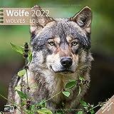 Wölfe 2022, Wandkalender / Broschürenkalender im Hochformat (aufgeklappt 30x60 cm) - Geschenk-Kalender mit Monatskalendarium zum Eintragen