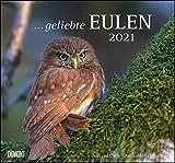 ... geliebte Eulen 2021 - DUMONT Wandkalender - mit den wichtigsten Feiertagen - Format 38,0 x 35,5 cm