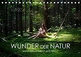WUNDER DER NATUR - wenn neues Leben entsteht (Tischkalender 2022 DIN A5 quer)