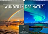 Wunder in der Natur (Wandkalender 2021 DIN A3 quer)