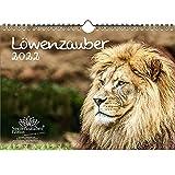 Löwenzauber DIN A4 Kalender für 2022 Löwen und Löwenbabys - Seelenzauber