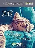 Eine Katze für jeden Tag 2018 ABK
