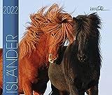 Isländer 2022: Island Pferde: Isländer Pferde