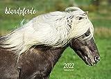 Edition Seidel Islandpferde Premium Kalender 2022 DIN A3 Wandkalender Pferdekalender Tiere Isländer Islandpony Pferde Island Skandinavien