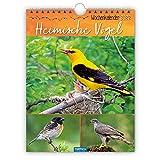 Trötsch Wochenkalender Heimische Vögel 2022: Wandkalender