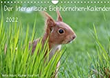 Der literarische Eichhörnchen-Kalender (Wandkalender 2022 DIN A4 quer)