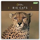 National Geographic Big Cats – Raubkatzen 2022: Original Carousel-Kalender [Mehrsprachig] [Kalender] (Wall-Kalender)