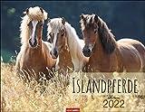 Islandpferde Kalender 2022 - Tierkalender - Wandkalender mit internationalem Monatskalendarium - 12 Farbfotos - 44 x 34 cm