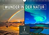 Wunder in der Natur (Wandkalender 2021 DIN A4 quer)
