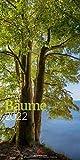 Bäume Kalender 2022, Wandkalender im Hochformat (33x66 cm) - Landschaftskalender / Naturkalender