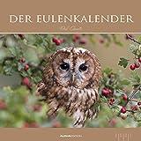 Der Eulenkalender 2021 - Bild-Kalender 33x33 cm - Owls - Tierkalender - Wandplaner - Alpha Edition
