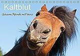 Kaltblut - schwere Pferde mit Herz (Tischkalender 2021 DIN A5 quer)