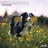 Australian Shepherd Traditioneller Kalender 2021