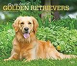 Golden Retriever – For the love of 2021 - 16-Monatskalender mit freier DogDays-App: Original BrownTrout-Kalender - Deluxe [Mehrsprachig] [Kalender] (Deluxe-Kalender)