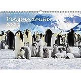 Pinguinzauber DIN A3 Kalender für 2021 Pinguin - Seelenzauber