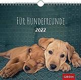 Für Hundefreunde 2022: Wandkalender mit Monatskalendarium