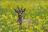 Heimische Tiere Kalender 2021