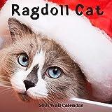 Ragdoll Cat Wall Calendar 2021: Ragdoll Cat Calendar 2021, 18 Months