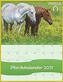 Pferdekalender 2021 - Pferde - Horses: Pferde 2021 - kalender 22x28 cm - Horses - Bild-Kalender - Familienplaner - mit Platz für Notizen, Ferienterminen und vorschau bis März 2022.