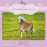 Mein Pferdekalender 2022 - Broschürenkalender 30x30 cm (30x60 geöffnet) - Kalender mit Platz für Notizen - Bildkalender - Wandplaner - Wandkalender