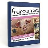 Freiraum-Kalender classic   Der Schweinekalender, Buchkalender 2022, Organizer (15 Monate) mit Inspirations-Tipps und Bildern, DIN A5