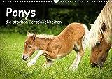 Ponys, die starken Persönlichkeiten (Wandkalender 2021 DIN A3 quer)