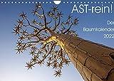 Astrein! - Der Baumkalender 2022 (Wandkalender 2022 DIN A4 quer)