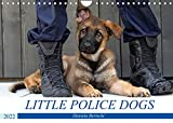 Little Police Dogs (Wandkalender 2022 DIN A4 quer)