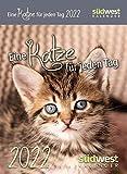 Eine Katze für jeden Tag 2022 Tagesabreißkalender