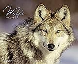 Wölfe 2022: Großer Wandkalender. Foto-Kunstkalender über den Wolf. Querformat 55 x 45,5 cm.