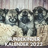 Hundekinder Kalender 2022: Ein Monatskalender mit Bildern der Welpen, Hundekinder für Schreibtisch, Büro, ideal zum Schreiben von Terminen, ... Frauen, Mädchen, Hundefreunde, Hundebesitzer
