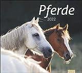 Pferde Bildkalender 2022 - times&more Tier-Kalender - Wandkalender mit Monatskalendarium - 30 x 27 cm