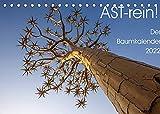 Astrein! - Der Baumkalender 2022 (Tischkalender 2022 DIN A5 quer)