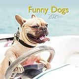 Funny Dogs 2021 - Wand-Kalender - Broschüren-Kalender - A&I - 30x30 - 30x60 geöffnet