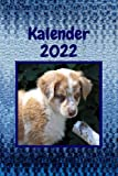 Kalender 2022: Süßer Welpe Australien Shepherd. Jahreskalender, Organizer, Taschenkalender & Terminkalender.