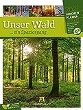 Unser Wald, ein Spaziergang - Wochenplaner Kalender 2021, Wandkalender im Hochformat (25x33 cm) - Wochenkalender mit Rätseln und Sudokus