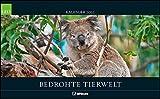 GEO Bedrohte Tierwelt 2022 - Wand-Kalender - Tier-Kalender - Poster-Kalender - 58x36